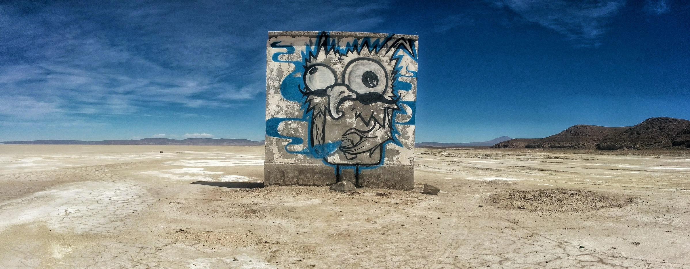 mur devis murale peinture desert chouette graffiti