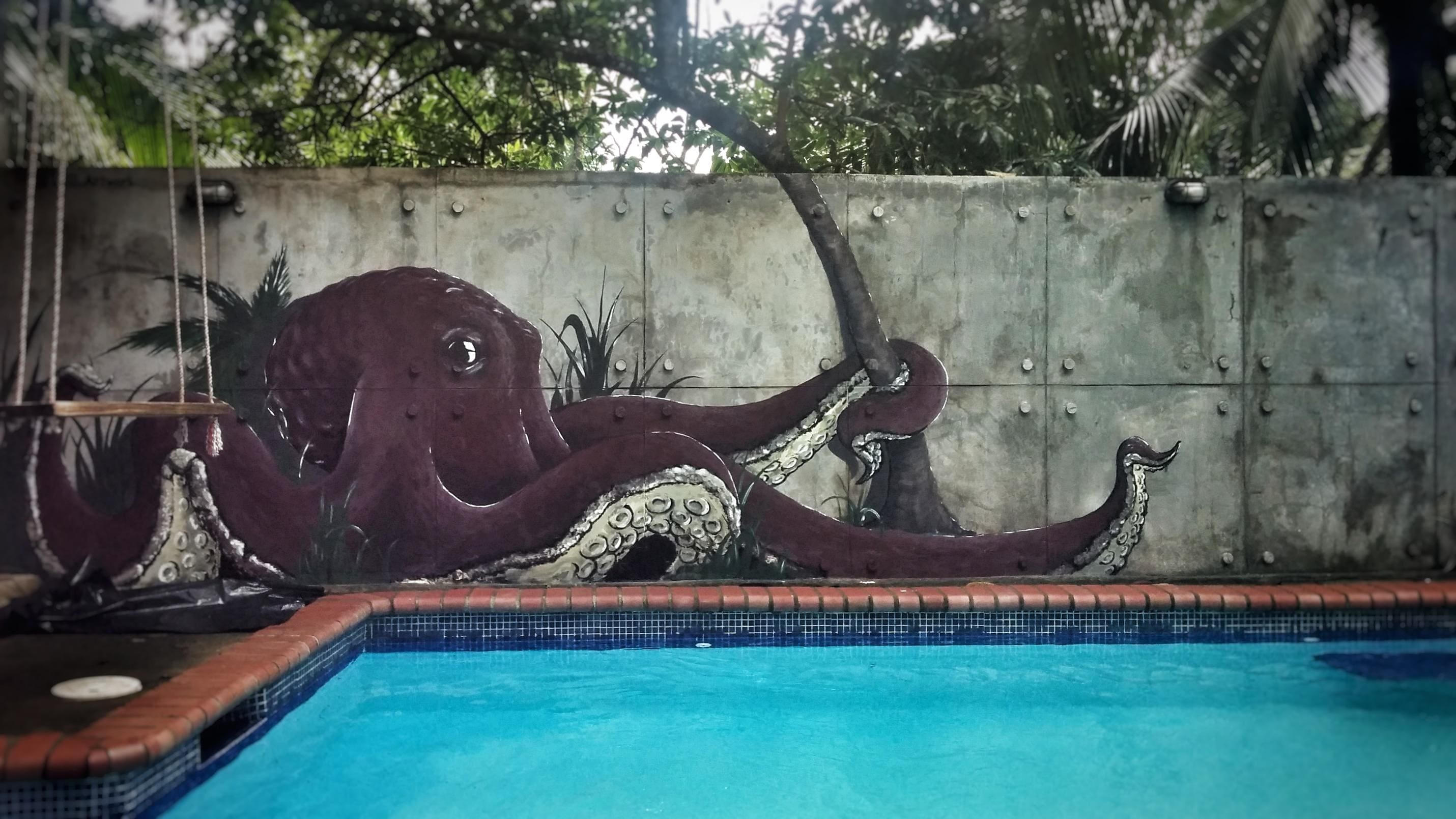 fresque piscine trompe oeil graffiti pieuvre anamorphose